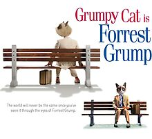 Grumpy Cat is Forrest Grump by Alan Hogan