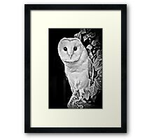 Barn Owl in B&W Framed Print
