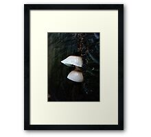 LITTLE CLOCHES ON THE BIG OAK STUMP Framed Print