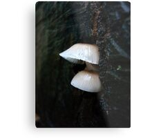 LITTLE CLOCHES ON THE BIG OAK STUMP Metal Print