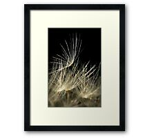 Soft as the Wind Framed Print