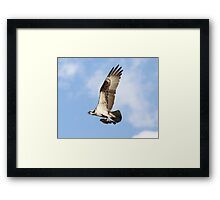 It may not be a broomstick, but it will do Framed Print
