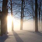 Morning River Fog by Dennis Pal