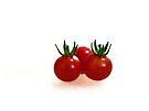 Mini Harvest by Susan S. Kline