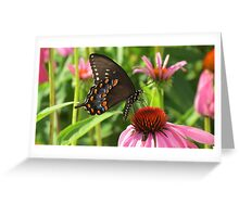 Back yard Butterfly Greeting Card