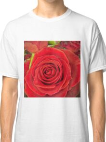 Love is a red rose Classic T-Shirt