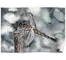 Dragonfly modern art print Poster