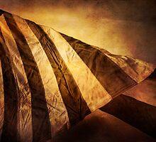 Twisting Glory by Bob Larson
