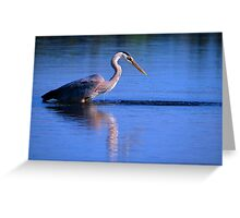 Great Blue Heron 1 Greeting Card
