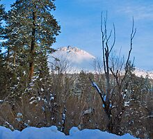 Mount Lassen by Tracy Jones