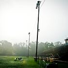 Wildcat Stadium by Patito49