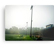 Wildcat Stadium Metal Print