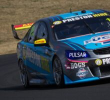 V8 Supercars - Sydney 400 2015 - Lee Holdsworth - Holden Sticker