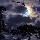 Moon Break by Silken Photography