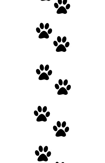dog paw prints in - photo #47
