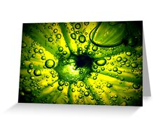 Zesty Lime Greeting Card