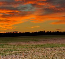 ELGIN - BUCCANEER SUNSET PANO by JASPERIMAGE