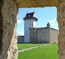 medieval Castle     by mrivserg