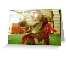 Too Cool - Yesteryear Greeting Card