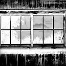 Window Reflection by David Schroeder