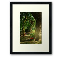 Pathway to Enchantment Framed Print