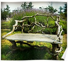 Wood Bench Poster