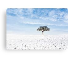 Winter on Old Hill Canvas Print