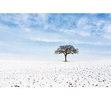 Winter on Old Hill Photographic Print