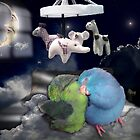 Good night and sweet dreams - Parrotlet Pet Birds sleeping by Rick Short