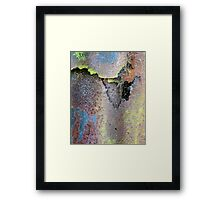Web & Decay Framed Print