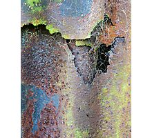 Web & Decay Photographic Print