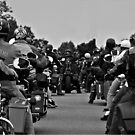 Riding in the Pack by Robin D. Overacre