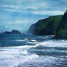 Kapaau Coast by Ellen Cotton
