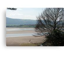 The Estuary seen from Portmeirion Canvas Print