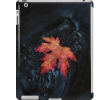 Ipad 1 iPad Case/Skin