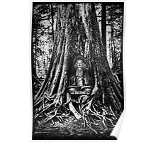 ☀ ツBUDDA IN TREE TRUNK☀ ツ Poster