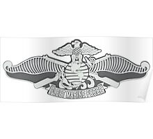 Fleet Marine Force Poster