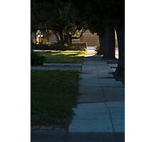 Suburbs  Photographic Print