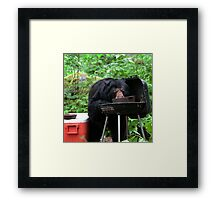 What You Don't Want To See When Coming Back To Camp Framed Print
