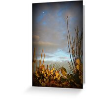 Cacti at Sunset Greeting Card