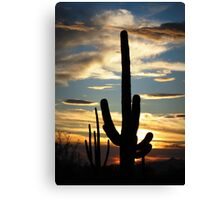 Saguaro Silhouette at Sunset  Canvas Print