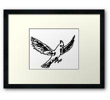 cockatoo in flight Framed Print