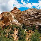 Zion Nation Park, Utah. by philw