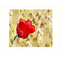 Floral - Tulips  Art Print