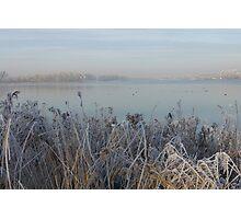 Winter view. Photographic Print