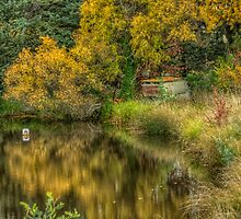 Watercolours - Near Tumbarumba - The HDR Experience by Philip Johnson