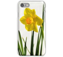Daffodil HQ iPhone Case/Skin
