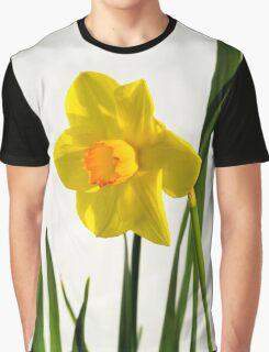 Daffodil HQ Graphic T-Shirt