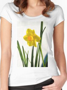 Daffodil HQ Women's Fitted Scoop T-Shirt