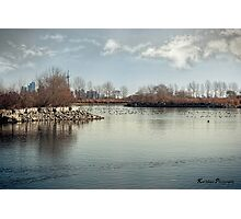 Waterfowl Paradise Photographic Print
